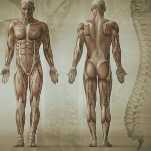 testimonianze-postura studio cecchi chiropratico